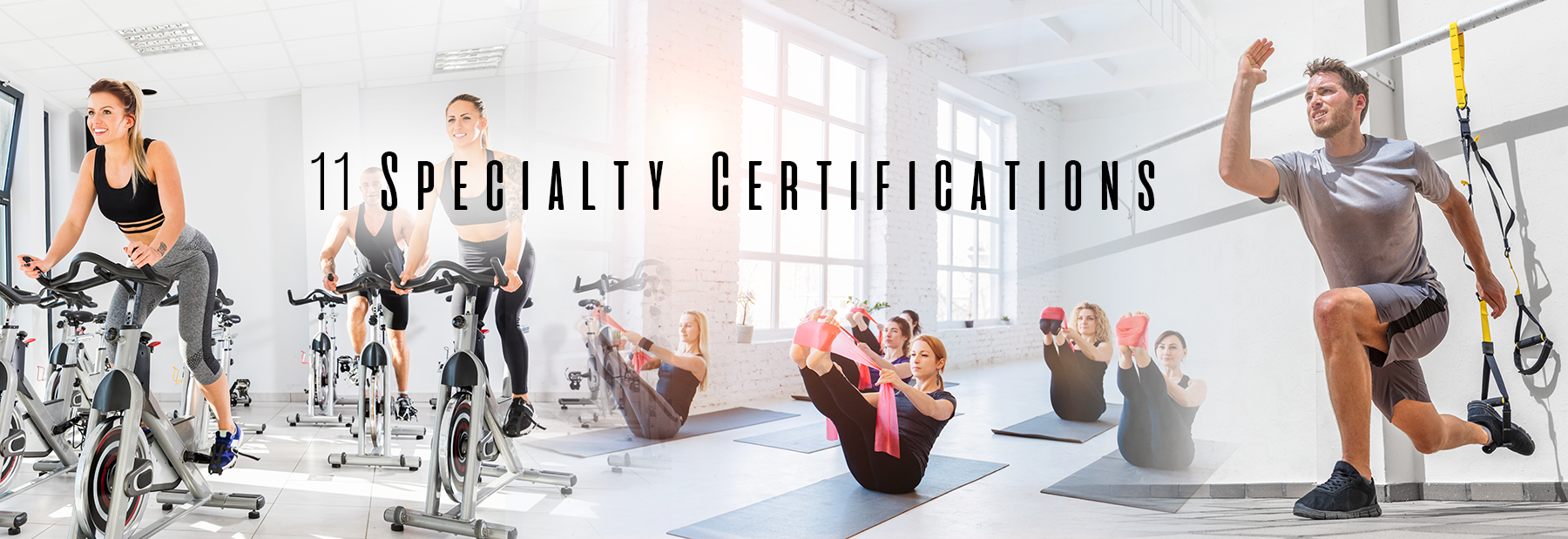 Nccpt Personal Trainer Certification Online